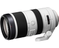 Sony 70-400mm F4-5.6 G SSM II