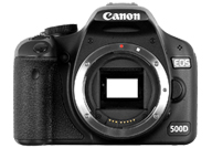 Canon EOS 500D, DIGITAL REBEL T1i or Kiss Digital X3 with no lenses
