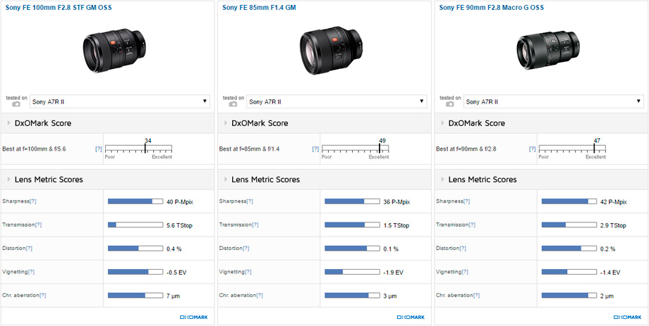 Sony FE 100mm F2.8 STF GM OSS vs Sony FE 85mm F1.4 GM vs Sony FE 90mm F2.8 Macro G OSS